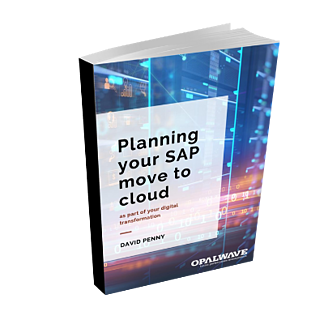 Planning your SAP move to cloud book cover (2)