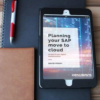 SAP cloud white paper ipad